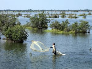 Shrimp fishermen on the coast of the state of Nayarit, Mexico