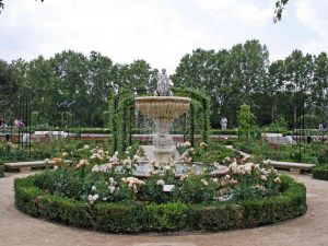 Rose garden in the Retiro Park in Madrid (Spain)