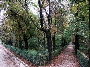 Jardines del Buen Retiro, Madrid