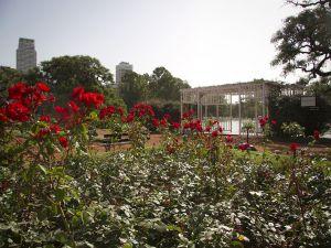 """Rose Garden in the park """"Tres de Febrero"""""""