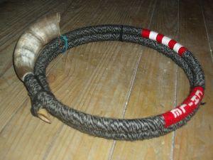 Trutruca, Mapuche wind instrument