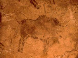 Bison in the cave of Altamira