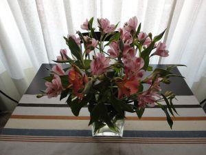 Vase with astromelias