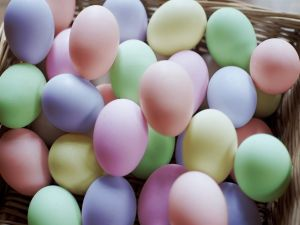 Eggs in pastel colors