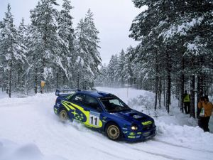 Rally in the snow