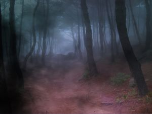 Tenebrous forest