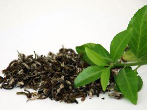 Tea leaves dry and fresh