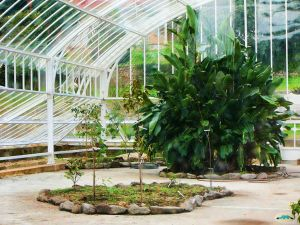 Palace Garden in Lourizán, Pontevedra, Spain
