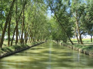 Castilla Canal View, near to Medina de Rioseco (Valladolid, Spain)