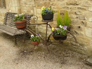 Decorative bicycle with plants