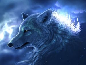 Wolf in the sky