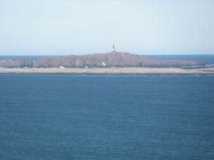 Penguin Island (Argentina)