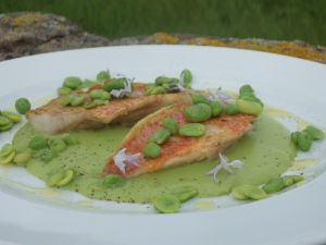 Red mullet with cream of fresh beans