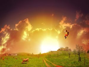 Cows grazing and balloons in the sky