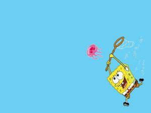 SpongeBob to the hunt of the octopus