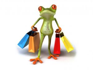 Little frog shopping