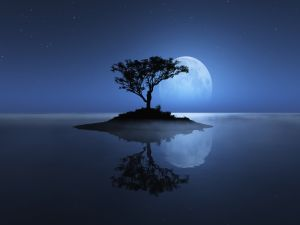 Island with a tree, in the company of the moon