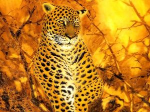 Leopard in fire color tones