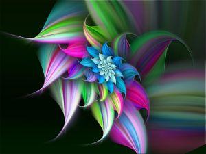 Digital Floral Art