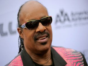 The singer Stevie Wonder