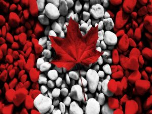 The flag of Canada with stones and a leaf