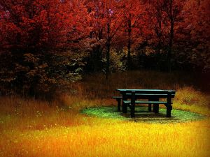 Wooden table on a colorful place