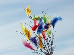 Branches decorated with colorful feathers