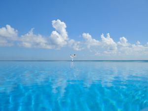 Yoga asana in a blue sea