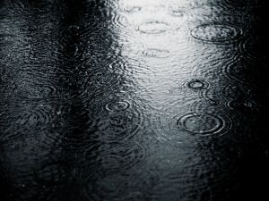 Water waves formed by the rain