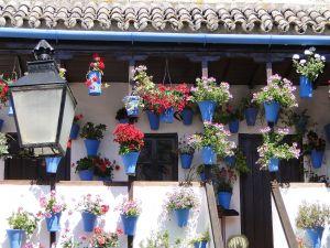Typical courtyard Cordoba (Spain)