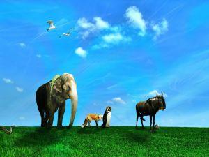 Animals under a blue sky