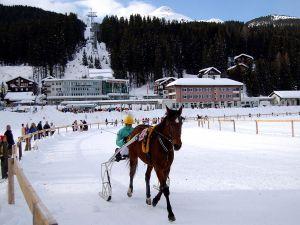 Horse racing at Arosa (Switzerland)