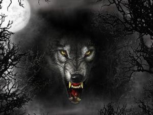 Wolf murderer