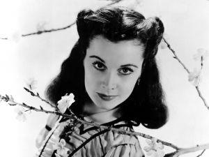 The actress Vivien Leigh