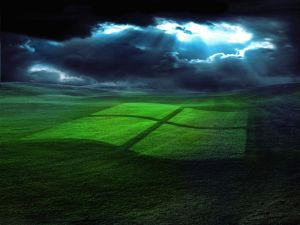 Windows logo in the grass