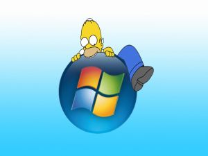 Windows Homer