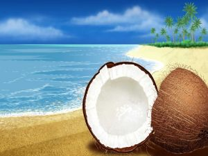 Coconut on a virtual beach