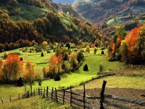Green pastures between mountains