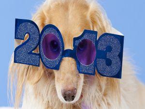 Celebrating the year 2013