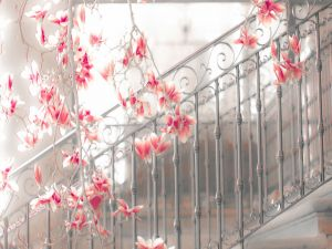 Magnolias on the stairs