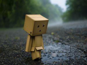 Danbo, sad and lonely