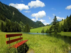 Wooden bench next to a river