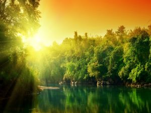 The sun over a river of green waters