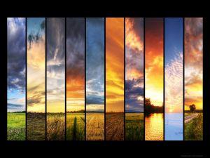 Different nature landscapes