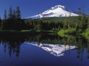 Mount Hood reflected in Trillium Lake (Oregon, United States)