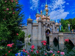 Disney Castle with a bridge and beautiful flowers