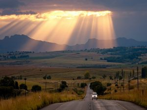 Rays of light on the road