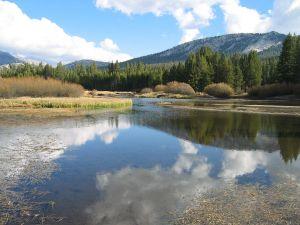 Tuolumne River in Yosemite National Park (California, USA)