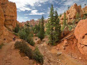 Navajo Trail, Bryce Canyon National Park, in Utah (USA)