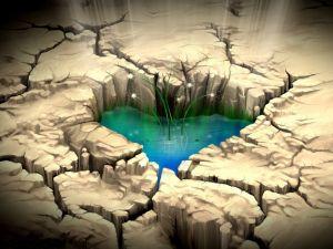 Heart shaped pond
